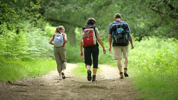 escursioni nei sentieri collinari